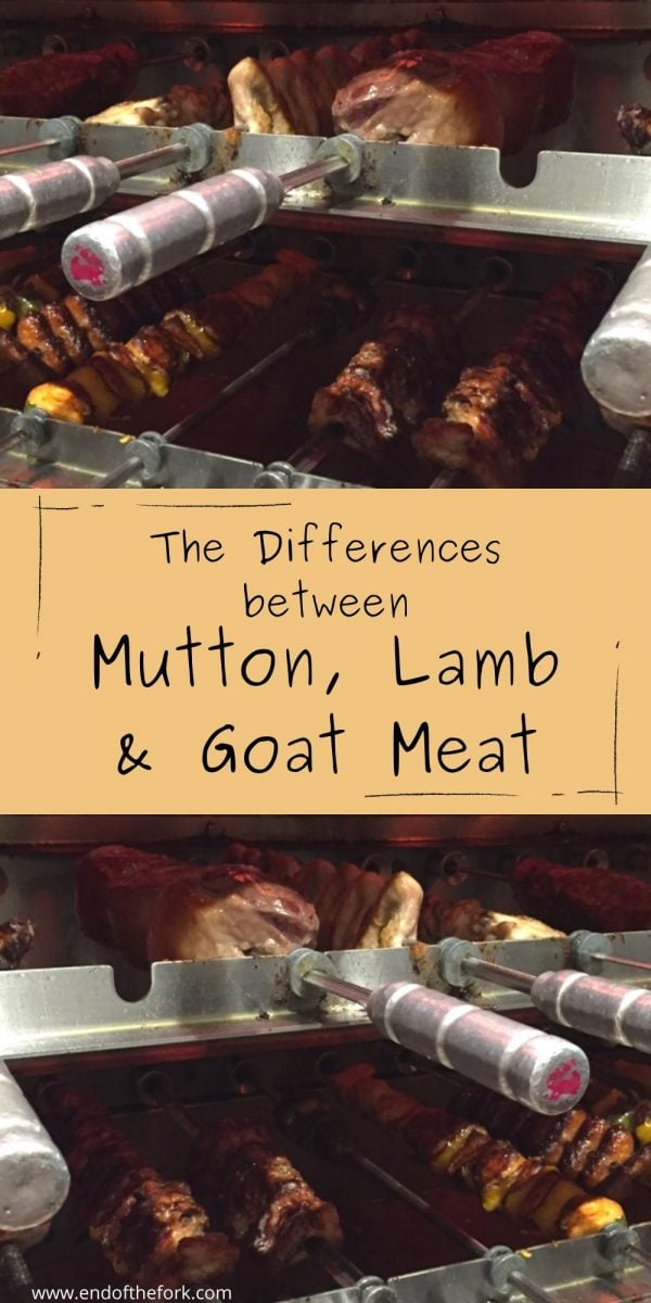 Pin image Skewers of meats under a grill with text overlay
