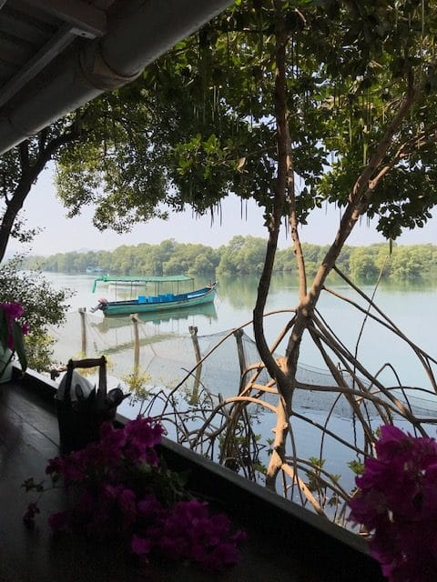View of a boat on the river from the restaurant