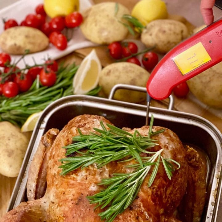 Digital thermometer in roasted turkey in pan