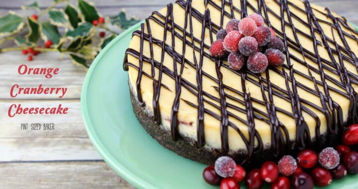 partial view of cheesecake with drizzle of chocolate sauce