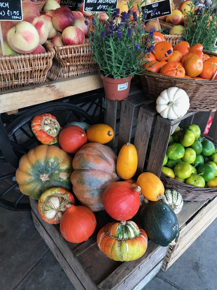 variety of pumpkins arranged on boxes