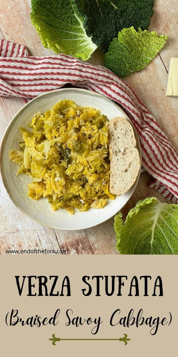 Pin image of braised savoy cabbage in bowl