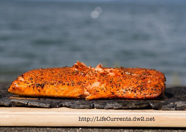 Image of grilled salmon on a charred cedar plank.